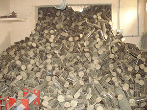 Biomass Briquetting Machine Exporter in Europe